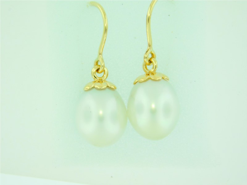 Galatea 14K Yellow Gold 9.5 - 10.0 Millimeters Freshwater Momento Bible In A Pearl Earrings